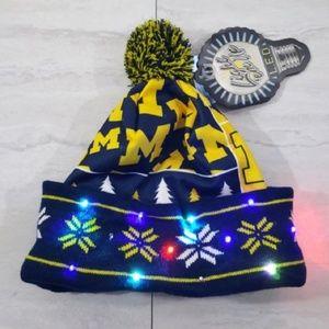 LED Light-Up Beanie Toboggan